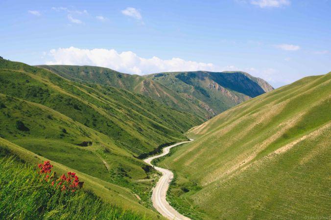 20170805-DSCF3494-Silk Road