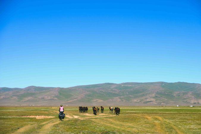 20170807-DSCF3590-Silk Road