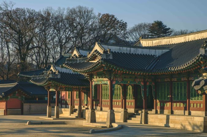 20180207-DSCF7702-Asie-Corée