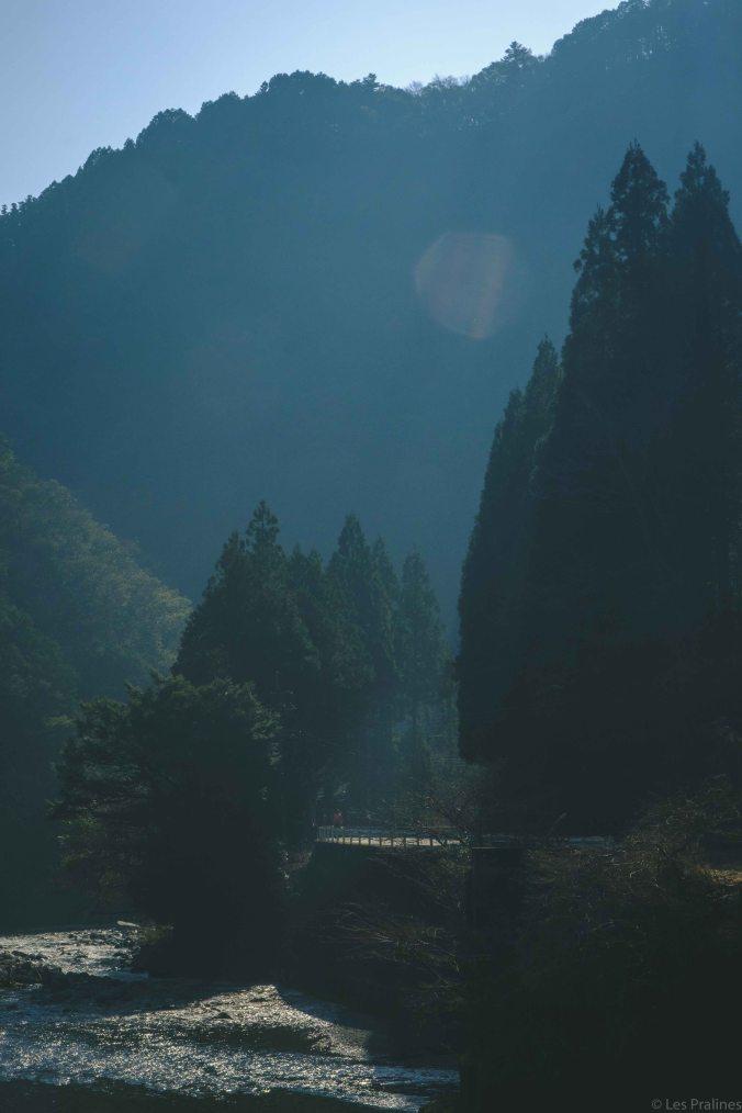 20180326-DSCF9415-Asie-Japon