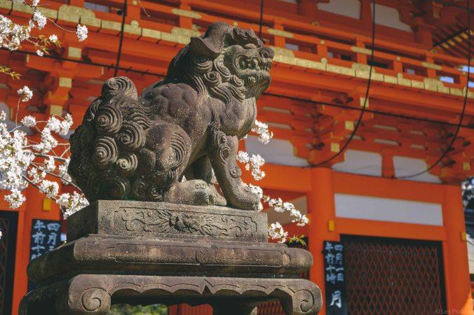 20180330-DSCF9656-Asie-Japon-Honshu