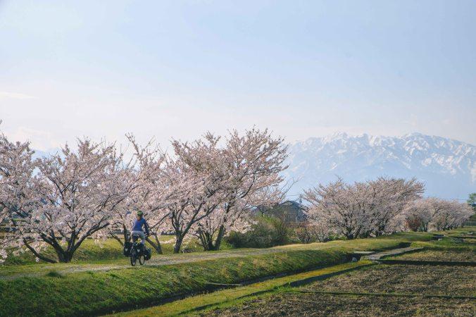 20180406-DSCF0105-Asie-Japon-Honshu